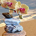 Orchids And Pebbles On Sand by Gill Billington
