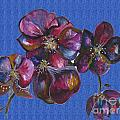Orchids Blue by Karen Larter