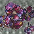 Orchids Grey Bubble by Karen Larter