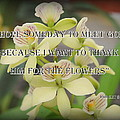 Orchids With Robert Brault Quote by James DeFazio