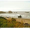 Oregon Beach by Kenneth De Tore