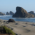 Oregon Coast 1 by Susan Porter