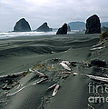 Oregon Coast 2 by Mike Nellums