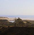 Oregon Coast 3 by Cathy Anderson