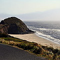 Oregon Coast And Fog by Michelle Calkins