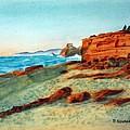 Oregon Coast by Patricia Novack