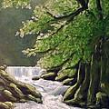 Oregon Creek by Kenny Henson