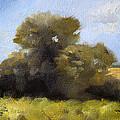Oregon Field Study by Nancy Merkle