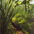 Oregon Forest Trail by Kenny Henson