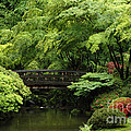 Oregon Japanese Garden  by Mike Nellums