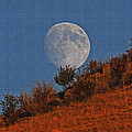 Oregon Moon by Tom Janca