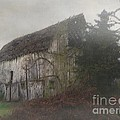 Oregon Relic by RC deWinter