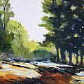 Oregon Trail by Nancy Merkle