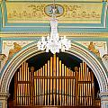 Organ And Ceiling by Jenny Setchell