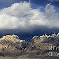 Organ Mountains New Mexico by Bob Christopher