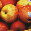 Organic Apples by Antonia Reeve/science Photo Library