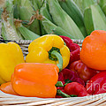 Organic Sweet Bell Peppers by Michael Moriarty