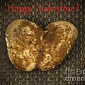 Organic Valentine by Les Palenik