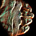 Orgone Transceiver by Stanislav Killer