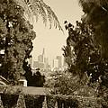 Original Vintage Urban Landscape Deco Reproduction Downtown Los Angeles Trees Retro Unique Fine Art by Marie Christine Belkadi