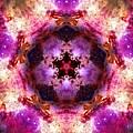 Orion Nebula Iv by Derek Gedney