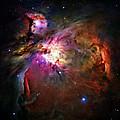 Orion Nebula by Ricky Barnard