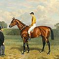 Ormonde Winner Of The 1886 Derby by Emil Adam