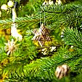 Ornament In A Christmas Tree by U Schade
