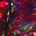 Ornaments-2063 by Gary Gingrich Galleries