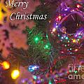 Ornaments-2090-merrychristmas by Gary Gingrich Galleries