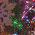 Ornaments-2096 by Gary Gingrich Galleries