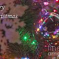 Ornaments-2096-merrychristmas by Gary Gingrich Galleries