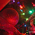 Ornaments-2107 by Gary Gingrich Galleries