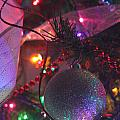 Ornaments-2143 by Gary Gingrich Galleries