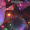Ornaments-2143-happyholidays by Gary Gingrich Galleries