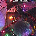 Ornaments-2143-merrychristmas by Gary Gingrich Galleries
