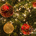 Ornaments On Tree by Imagery by Charly