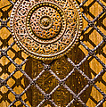 Ornate Door Knob by Carolyn Marshall