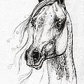 Ostragon Polish Arabian Horse 3 by Angel Ciesniarska