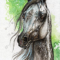 Ostragon Polish Arabian Horse Painting   by Angel Ciesniarska