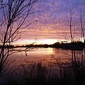 Ottawa River Sunrise by Melissa McDole