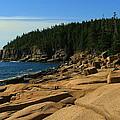 Otter Cliff by Jeff Heimlich