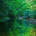 Otter Creek Reflection  by John  Hannan