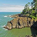 Otter Crest Loop Viewpoint by Richard Risely