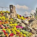 Ott's Greenhouse - Schwenksville - Pa by Mother Nature