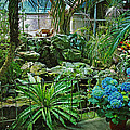 Ott's Greenhouse - Schwenksville - Pennsylvania - Usa by Mother Nature