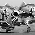 Our American Friends - Mustang And C-47 Troop Carriers by Ian Collins