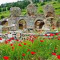 Our Entry Into Ephesus And Its Baths-turkey by Ruth Hager