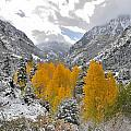Ouray Fall Colors by Ray Mathis