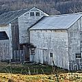 Out Behind The Barn by Skip Willits